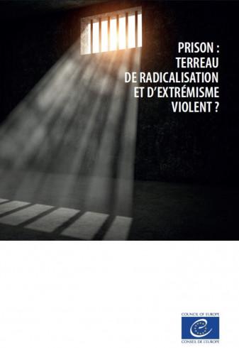Prison : terreau de radicalisation et d'extrémisme violent ? (2018)