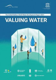 The United Nations World Water Development Report 2021 - Valuing water